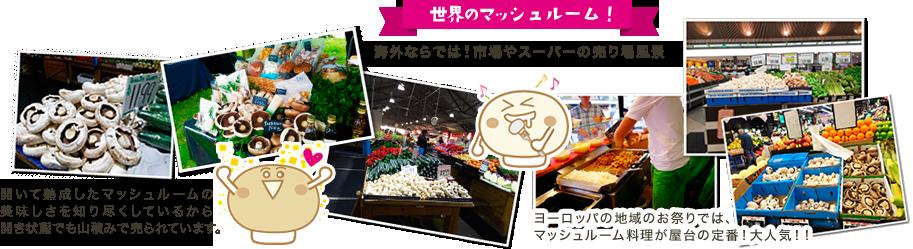 世界のマッシュルーム 海外ならでは!市場やスーパーの売り場風景